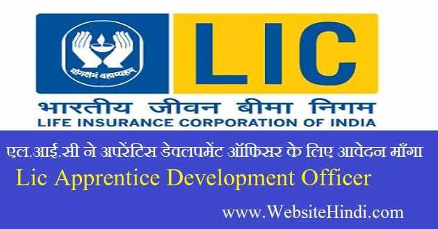 apprentice development officer