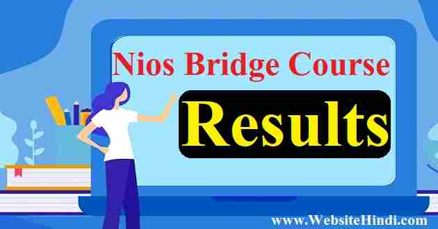 Nios Bridge Course Result 2019