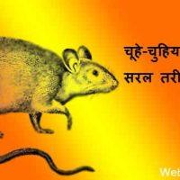 चूहे-चुहियां भगाने का अचूक उपाय और नुस्खे हिंदी में |