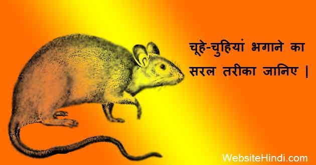 Chuhe Bhagane Ka Trika Hindi