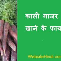 काली गाजर खाने के फायदे !