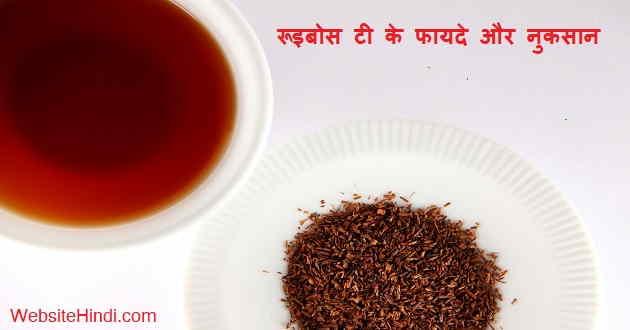 rooibos-tea-kya-hai-hindi