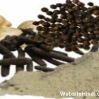 त्रिकटु चूर्ण के फायदे और नुकसान (Trikatu Churna Ke Fayde In Hindi)