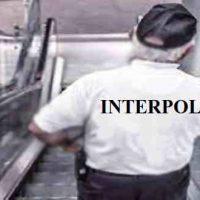 Interpol क्या है? इंटरपोल का मुख्य उदेश और इंटरपोल के मुख्य तथ्य