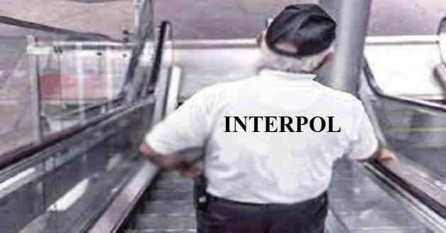 interpol-kya-hai-Interpol-क्या-है